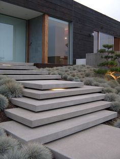 cantilevering entry steps with ornamental grass More