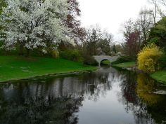 Dow Gardens, in Midland MI...i miss going there
