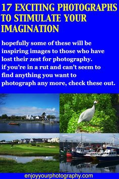 Hopefully some of these will be inspiring images to those who have lost the zest they had for photography. Even if you're still full of enthusiasm, some of these photos might suggest possible shots to you. Photo Projects, Photography Projects, Photo Tips, Photoshop Actions, Lightroom Presets, Shots, Fine Art, Landscape, Nature