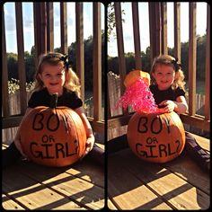 Pumpkin Gender Reveal