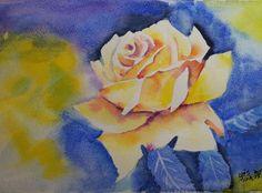 Yellow rose too; watercolour