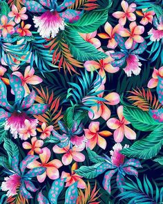 Wallpaper Samsung Galaxy - Pattern Floral Art Decoration background - Wallpapers World Tropical Flowers, Art Tropical, Motif Tropical, Tropical Pattern, Tropical Design, Neon Flowers, Cute Wallpaper Backgrounds, Flower Backgrounds, Flower Wallpaper