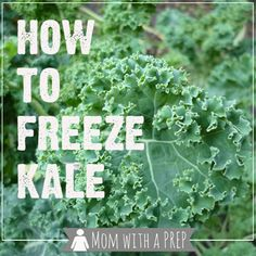 How to Freeze Fresh, Raw Kale - Mom with a PREP