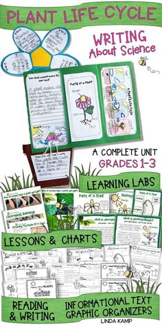 Are you looking for a fun way to get your kids writing about science? This complete unit for teaching the life cycle of plants includes 20 activities, lessons, and charts plus a culminating foldable flower booklet perfect for display and assessment!