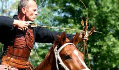 Mittelalterfest in Eggenburg Horses, Animals, Animales, Animaux, Horse, Words, Animal, Animais