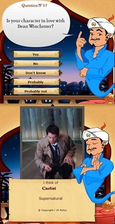 Even Akinator ships it! Hahaha I'm dying