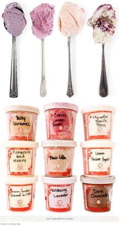 Jeni's Splendid Ice Creams...great flavors of splendid ice cream...I have always thought ice cream is splendid, myself!