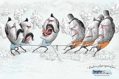 Sanofi Targifor: Tug of War