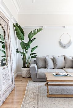 Interior designer Tim Connah and his partner Grae cleverly transformed their one-bedroom Manly apartment into a cool coastal abode. Home Living Room, Living Room Designs, Living Room Decor, Bedroom Decor, Living Room Inspiration, Home Decor Inspiration, Home Interior, Interior Design, Interior Plants