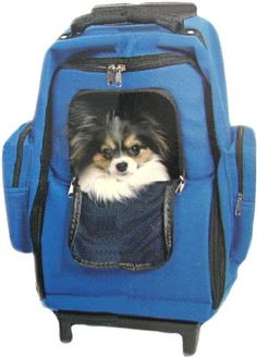 $39.99-$69.99 The stylish lightweight case that converts to a backpack or rolls along on wheels to keep your pet safe and warm during travel. Ethical Fashion Pet Weekender on Wheels Travel Carrier Features: *  2 zippered main panel allows for easy placement or removal of your pet *  Mesh privacy cover *  Backpack storage panel *  Padded shoulder straps  *  Removable inner fleece liner *  Pets up  ...