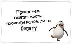 Прикольные фразочки в картинках №5614 » RadioNetPlus.ru развлекательный портал