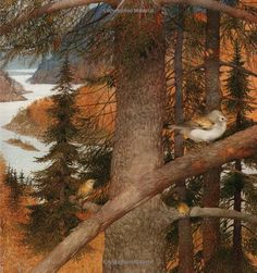 Life in the Boreal Forest: Brenda Z. Guiberson,Gennady Spirin
