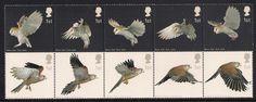 GB 2003 sg2327-36 Birds Of Prey set MNH Barn Owl Kestrel Bird Flight   eBay
