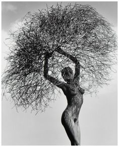 Image result for Herb Ritts