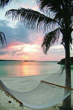 #hammock #beach #sunset this makes me feel comfortable which is what i want my shorts to feel like