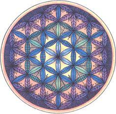 Flor de la Vida es el nombre que se da a una figura geométrica compuesta de 19 círculos completos del mismo diámetro y 36 arcos circulares que forman un conjunto de forma hexagonal, el cual se incluye a su vez en un círculo mayor.