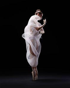 Mary Beth Hansohn - Photographer Rachel Neville