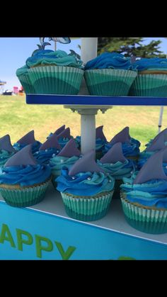 Shark themed 1st birthday cupcakes. ~ Fondant shark fin cupcake decorations.  Cupcakes by: Bella Baby Cakes