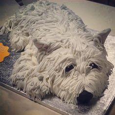 A Westie Cake!!!