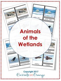 Animals of the Wetlands Montessori 3-Part-Cards