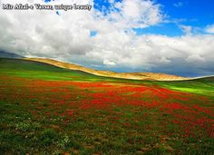Mir Afzal-e Vavsar, unique beauty   Mir Afzal-e Vavsar Village is an Iranian northern village located in Mazandaran Province hosting exquisite natural sites.  #iFilm