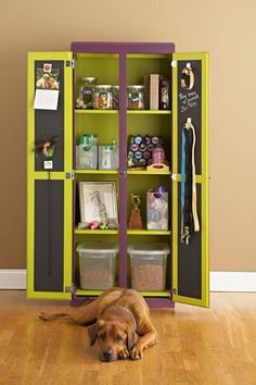 DIY: Puppy Pantry. I can see myself using something like this for cat food and supplies, except I'd make a compartment on the bottom for their litter box and make an entry for them on the side.