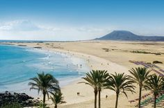 Enjoy your holidays in Fuerteventura with RIU Hotels & Resorts: beach hotels, all-inclusive, sport, spa and unique experiences at the best price guaranteed. Places In Europe, Oh The Places You'll Go, Places To Visit, Menorca, Tenerife, Vacation Places, Places To Travel, Riu Hotels, Inclusive Holidays