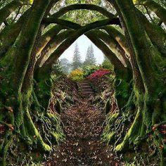Entrance to the Secret Garden, Portland, Oregon  Nestled in the hills on the west side of downtown Portland is an amazing escape that is not widely known, even among the citizens of Portland. Forest Park is a 5,100 acre city owned wilderness that is one of the largest city parks in the country.
