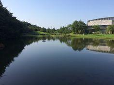 【P】宮城大学の池。これは、木や建物が水面に逆さまに映されている。風がなかったり、天気が良いときだから見られる造形である。