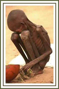 When you think of starving children, and worldwide hunger, what countries first come to your mind? Description from ilovemoringa.com. I searched for this on bing.com/images