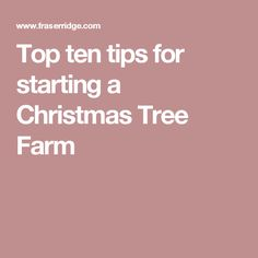 start a christmas tree farm hobby farms christmas tree farm pinterest christmas tree farm christmas tree and farming - How To Start A Christmas Tree Farm