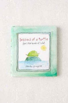 Lessons Of A Turtle: The Little Book Of Life By Sandy Gingras