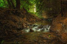 Stream in The Woods by Artur Szczeszek on 500px
