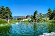 Strand, Austria, Golf Courses, Outdoor, Amazing Places To Visit, Hiking, Vacation, Viajes, Outdoors