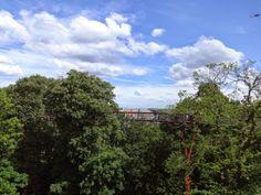 V-Bubbly: O que ver e fazer em Londres #28 Royal Botanic Gar...