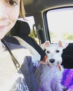 Mom picked me up from the vet. I got spayed yesterday. Thank God for Moms. Time to see my family. #rescueschnauzerrosie #rescueschnauzer #rescuepup #rescuedog #minischnauzer #shelterpup #shelterdog #spayandneuter