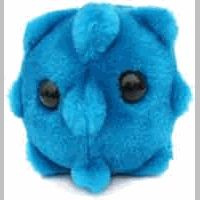 Giant Microbes Common Cold (Rhinovirus) Gigantic doll Billions of people a year catch the cold. Learn all about the Common Cold with this cuddly companion. Plush Microbes, Giant Microbes, Get Well Soon Gifts, Plush Dolls, Funny Cute, Viral Videos, Funny Gifts, Little Ones, At Least