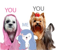 We're all beautiful in our own way!  #hanaohana #kawaii #cute #dogs #love #beyou