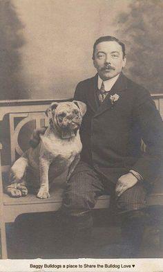 Bulldog antiguo y señor