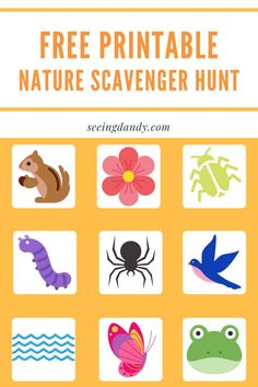 This free printable nature scavenger hunt is an easy DIY and perfect for doing on a family hike. Kids will love it! #diy #printable #scavengerhunt #travel #wanderlust #momlife #familyfun #familytime #hiking Outdoor Scavenger Hunts, Nature Scavenger Hunts, Kids Activities At Home, Summer Activities, Preschool Ideas, Diy Crafts Vintage, Craft Free, Crafts For Boys, Kids Prints
