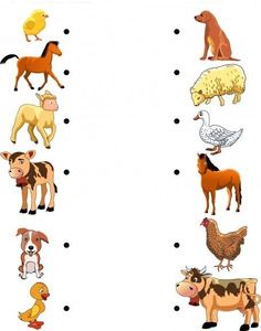 Animals and Their Young 2 worksheet Farm Animals Preschool, Animal Activities For Kids, Farm Activities, Educational Activities For Kids, Preschool Worksheets, Preschool Learning, Infant Activities, Teaching Kids, Animals And Their Homes