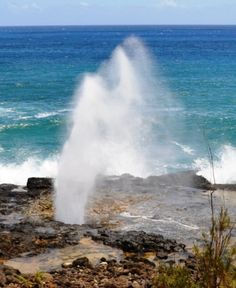 Spouting Horn, Poipu Beach Kauai~My husband and I saw this a few years ago~It is amazing~