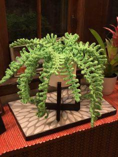 Crochet Cactus, Crochet Leaves, Crochet Flowers, Crochet Home, Cute Crochet, Crochet Plant Hanger, Diy Crochet Projects, Crochet Motif Patterns, Crochet Flower Tutorial