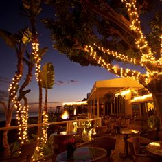 Geoffrey's Restaurant; Malibu, CA If cozy and quaint is what you're looking for, Vinegar Hill House should get your reservation. The menu features Tagliatelle with Lamb Ragu, Roasted Chicken, and Dark Chocolate Torte, among other pleasing dishes
