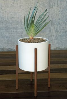 Modernica Case Study® Ceramic Cylinder Pot Planter with Wood Stand