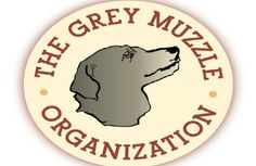 """Senior Pet Month - Pet360 Pet Parenting Simplified - For the entire month of November, you can show your support of their hard work by entering the code """"SENIORS"""" at checkout - you will receive $5 off of your order and Pet360, Inc. will donate $5 to The Grey Muzzle Organization!*"""