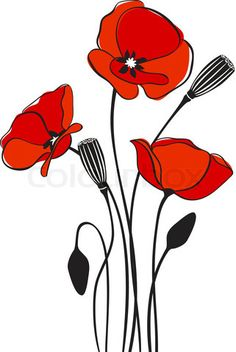 Vector of 'abstract floral red poppy card vector illustration'