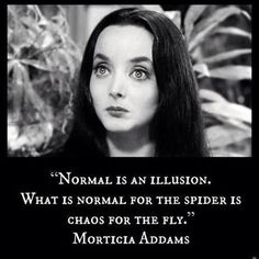 Love this quote from The Addam's Family inspirational quotes normal is an illusion morticia addams Quotable Quotes, Wisdom Quotes, Quotes To Live By, Me Quotes, Motivational Quotes, Funny Quotes, Inspirational Quotes, Hilarious Memes, Funny Humor