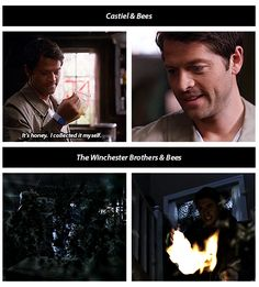 Castiel and bees vs. the Winchester brothers and bees