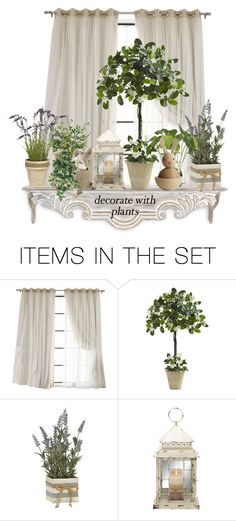 """""""Planters"""" by terry-tlc ❤ liked on Polyvore featuring art"""